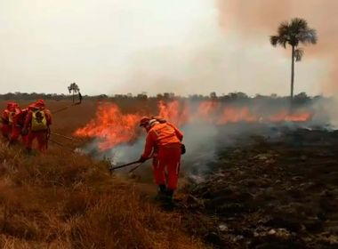 1 101 Bahia registra mais de 31 mil focos de incêndio no ano; Oeste é região com mais casos