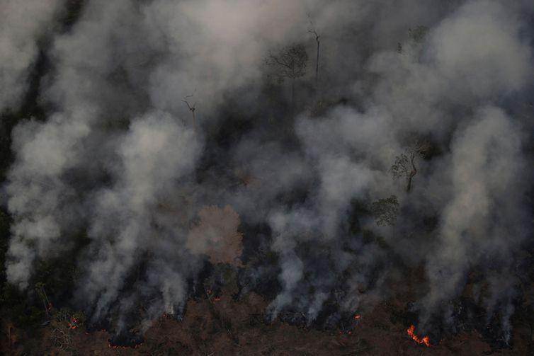 Secretário-geral da ONU está preocupado com queimadas na Amazônia