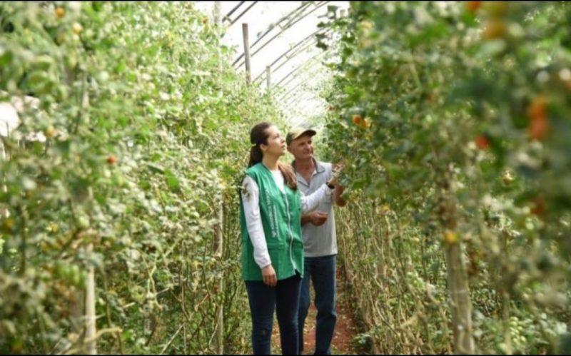 Começam as inscrições para curso técnico em agronegócio na Bahia